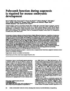 Polycomb function during oogenesis is required for mouse embryonic