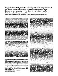 Polycyclic Aromatic Hydrocarbon Carcinogens ... - ATS Journals
