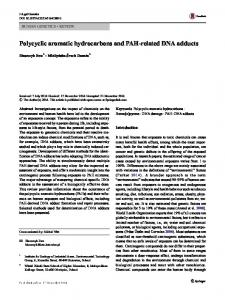 Polycyclic aromatic hydrocarbons and PAH-related DNA adducts - Core