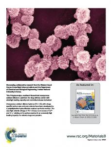 Polyelectrolyte-mediated hierarchical mesoporous