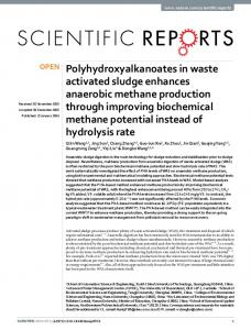 Polyhydroxyalkanoates in waste activated sludge