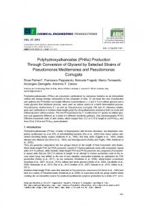 Polyhydroxyalkanoates (PHAs) Production Through Conversion of