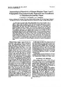 Polypeptides Electrophoretically Separated and Transferred