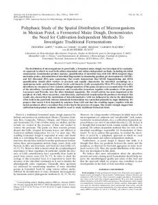 Polyphasic Study of the Spatial Distribution of Microorganisms in ...