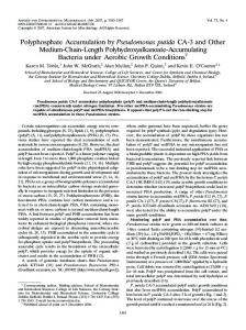 Polyphosphate Accumulation by Pseudomonas putida CA-3 and Other ...