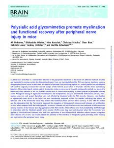 Polysialic acid glycomimetics promote myelination and functional ...