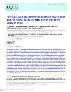 Polysialic acid glycomimetics promote myelination and ... - Brain