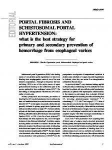 Portal fibrosis and schistosomal portal hypertension: what is the best ...