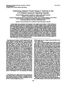 Positioning Atypical Protein Kinase C Isoforms in the UV-Induced ...
