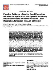 Possible Evidence of Amide Bond Formation Between ... - Springer Link
