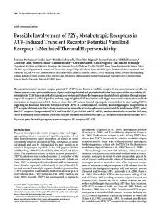 Possible Involvement of P2Y2 Metabotropic
