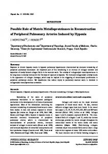 Possible Role of Matrix Metalloproteinases in Reconstruction of ...