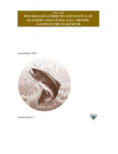 post-release attributes and survival of hatchery and ...