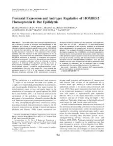 Postnatal Expression and Androgen Regulation ... - Wiley Online Library