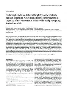 Postsynaptic Calcium Influx at Single Synaptic