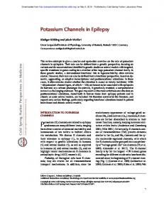 Potassium Channels in Epilepsy