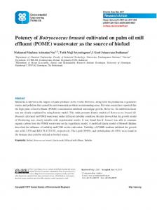 Potency of Botryococcus braunii cultivated on palm oil mill effluent