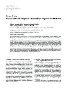 Potency of Fish Collagen as a Scaffold for Regenerative Medicine