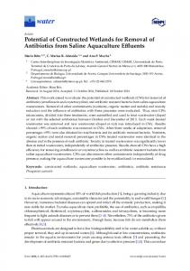 Potential of Constructed Wetlands for Removal of Antibiotics ... - MDPI