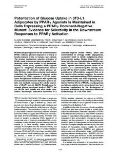 Potentiation of Glucose Uptake in 3T3-L1 Adipocytes by ... - CiteSeerX