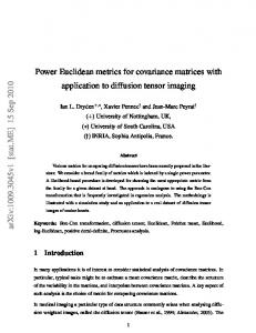 Power Euclidean metrics for covariance matrices with application to ...