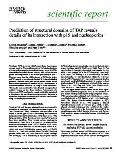 Prediction of structural domains of TAP reveals ... - Semantic Scholar