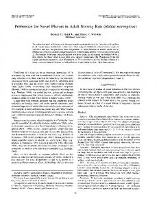 Preference for Novel Flavors in Adult Norway Rats