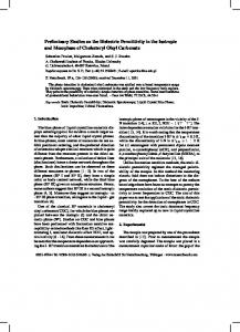 Preliminary Studies on the Dielectric Permittivity in