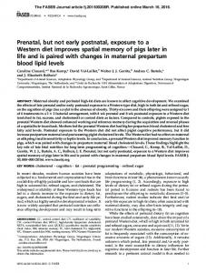 Prenatal, but not early postnatal, exposure to a Western diet improves ...