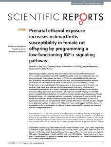 Prenatal ethanol exposure increases osteoarthritis ... - Semantic Scholar