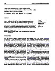 Preparation and characterization of iron oxide nanoparticles coated ...