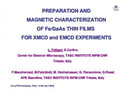 PREPARATION AND MAGNETIC CHARACTERIZATION OF Fe ...