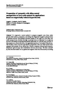 Preparation of composite with silica-coated nanoparticles of iron oxide ...