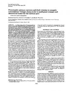 Presynaptic calcium currents and their relation to synaptic ...