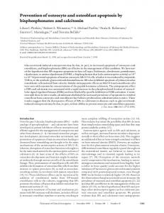 Prevention of osteocyte and osteoblast apoptosis by bisphosphonates ...