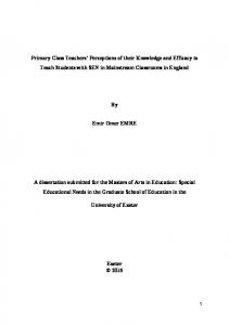 Primary Class Teachers' Perceptions of their Knowledge and Efficacy