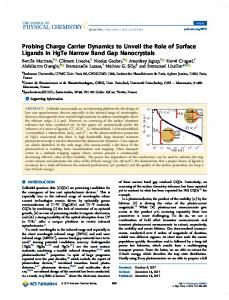 Probing Charge Carrier Dynamics to Unveil the Role of Surface