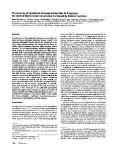 Processing of Epidermal Glucosylceramides Is Required for Optimal ...
