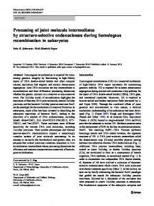 Processing of joint molecule intermediates by structure ... - Springer Link