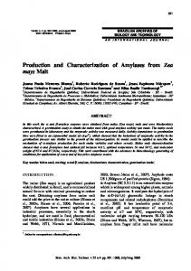 Production and Characterization of Amylases from