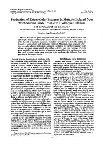 Production of Extracellular Enzymes in Mutants Isolated from