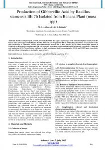 Production of Gibberellic Acid by Bacillus siamensis BE 76 Isolated