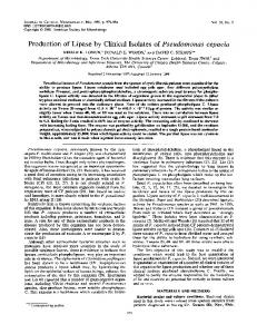 Production of Lipase by Clinical Isolates of