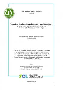 Production of polyhydroxyalkanoates from cheese whey - - RUN