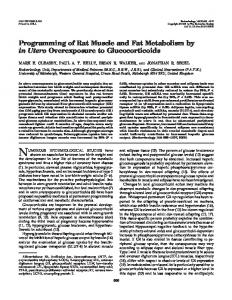 Programming of Rat Muscle and Fat Metabolism by in Utero ...
