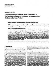 Proinflammatory Cytokine Gene Expression by Murine Macrophages ...