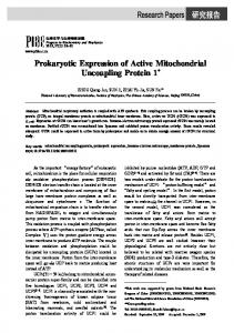 Prokaryotic Expression of Active Mitochondrial Uncoupling Protein 1*