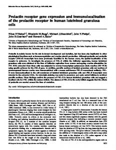 Prolactin receptor gene expression and immunolocalization of the ...