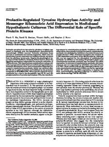 Prolactin-Regulated Tyrosine Hydroxylase Activity and Messenger ...