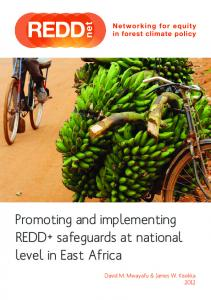Promoting and implementing REDD+ safeguards at ... - The REDD Desk